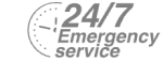 24/7 Emergency Service Pest Control in Becontree Heath, Becontree, RM8. Call Now! 020 8166 9746
