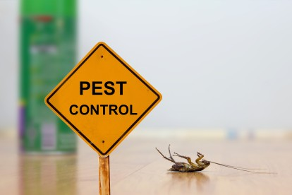 Pest Contol in Becontree Heath, Becontree, RM8. Call Now 020 8166 9746