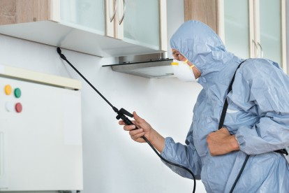 Home Pest Control, Pest Control in Becontree Heath, Becontree, RM8. Call Now 020 8166 9746